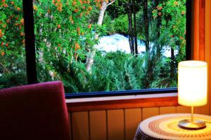 Hotel Salto del Carileufu, Hotely  Pucón - big - 106