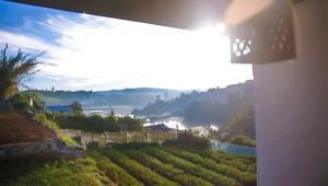 Gregory Lake Inn, Penziony – hostince  Nuwara Eliya - big - 1