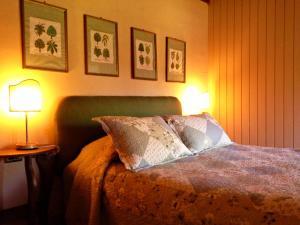 Hotel Salto del Carileufu, Hotely  Pucón - big - 224
