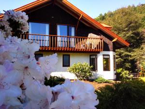 Hotel Salto del Carileufu, Hotely  Pucón - big - 102
