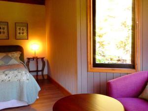 Hotel Salto del Carileufu, Hotely  Pucón - big - 226