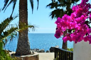 Hotel Quintas Papagayo, Hotels  Ensenada - big - 177
