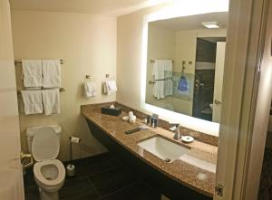 Cherry Tree Inn and Suites, Отели  Traverse City - big - 38