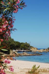 Résidence Lisa Maria, Villaggi turistici  Favone - big - 29