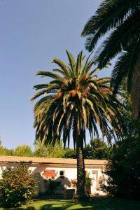 Résidence Lisa Maria, Villaggi turistici  Favone - big - 24