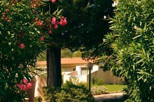 Résidence Lisa Maria, Villaggi turistici  Favone - big - 23