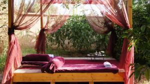 Riad Jardin des Orangers, Riads  Taroudant - big - 4
