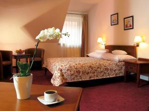 Hotel Relaks Wellness & SPA, Hotels  Karpacz - big - 15