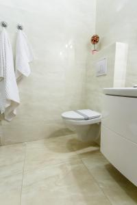 Iassium Residence Iasi, Apartments  Iaşi - big - 41