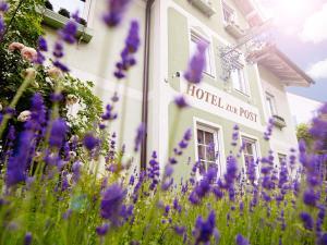 Das Grüne Hotel zur Post - 100 % BIO, Отели  Зальцбург - big - 122