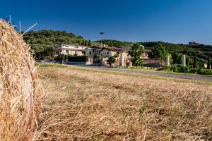 Villa Santa Caterina, Venkovské domy  Montalto Uffugo - big - 38
