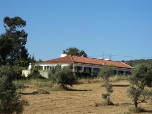 Casa Do Forno, Holiday homes  Montemor-o-Novo - big - 38