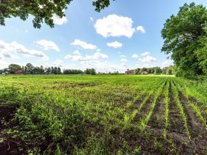 De Snoeibijl, Prázdninové domy  Ruiselede - big - 16