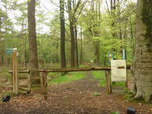 De Snoeibijl, Case vacanze  Ruiselede - big - 13