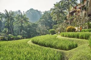 Four Seasons Resort Bali at Sayan (12 of 80)