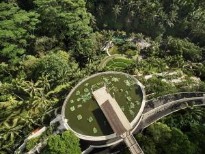 Four Seasons Resort Bali at Sayan (2 of 80)