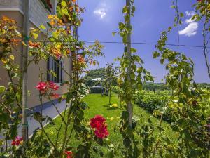 Villa Roža, Vily  Tinjan - big - 31