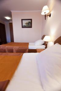 Hotel Gandvik, Hotels  Belomorsk - big - 10
