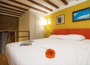 Romantic Apartment Porta Venezia, Apartmány  Miláno - big - 12