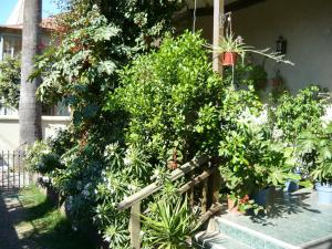 Hostal Residencia Blest Gana, Penziony – hostince  Viña del Mar - big - 22