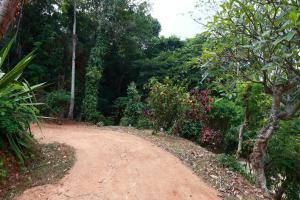 Zee's Garden