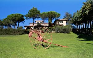 Agriturismo Anna De Croy, Фермерские дома  Magliano in Toscana - big - 17