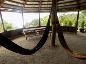 Rancho Hostal La Escondida Eco Park, Bed and breakfasts  Teopisca - big - 6