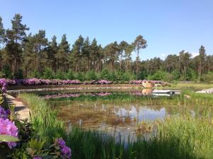 Landgoed Sollewerf, Holiday homes  Beekbergen - big - 55