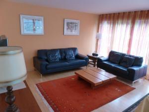 Apartment Surselva Park, Apartments  Flims - big - 15