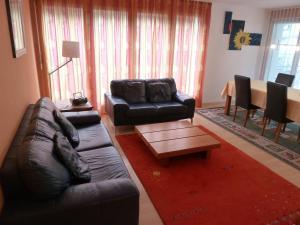 Apartment Surselva Park, Apartments  Flims - big - 3