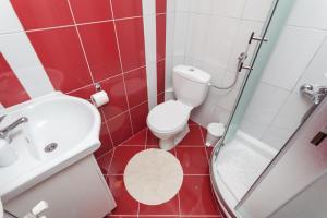 Vila Aleksandra, Apartments  Zlatibor - big - 2