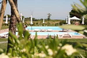 Residence Marina Fiorita, Apartments  Grado - big - 4