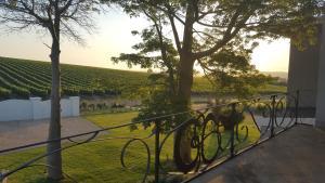 Dieu Donne, Affittacamere  Stellenbosch - big - 20