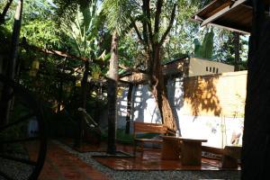 Langchia Hostel, Hostely  Phu Quoc - big - 23