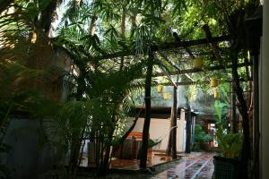Langchia Hostel, Hostely  Phu Quoc - big - 47