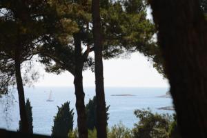 Campsite Porton Biondi Mobile Homes Mediteran, Ferienparks  Rovinj - big - 5