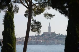 Campsite Porton Biondi Mobile Homes Mediteran, Ferienparks  Rovinj - big - 1