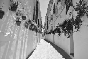 Pensión San Marcos, Guest houses  Arcos de la Frontera - big - 33