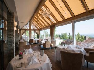 Design-Konferenzhotel & Restaurant Steinernes Schweinchen, Hotely  Kassel - big - 23