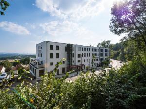 Design-Konferenzhotel & Restaurant Steinernes Schweinchen, Hotely  Kassel - big - 30