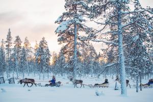 Kakslauttanen Arctic Resort (6 of 53)