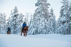Kakslauttanen Arctic Resort (37 of 53)