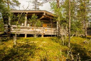 Kakslauttanen Arctic Resort (27 of 53)