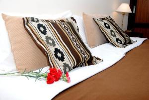 Suter Petit Hotel, Hotels  San Rafael - big - 87