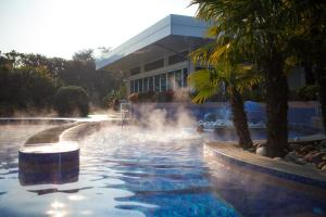 Grand Hotel Terme, Hotely  Montegrotto Terme - big - 14