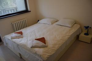 Borovets Holiday Apartments - Different Locations in Borovets, Apartments  Borovets - big - 51