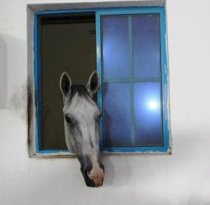 Creo Equestrian and Country Club, Penzióny  Barka - big - 19