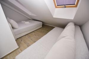 Hostel Zrće, Hostels  Novalja - big - 25