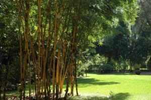 Quinta da Bela Vista (27 of 60)