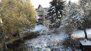 Haus Steeg, Apartmanok  Braunlage - big - 67